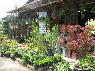 The Nursery Located At Taman Bukit Indah Oug Has Two Entrances Main Entrance Is Jalan Nyaman 10 It Also Accessible From Gembira