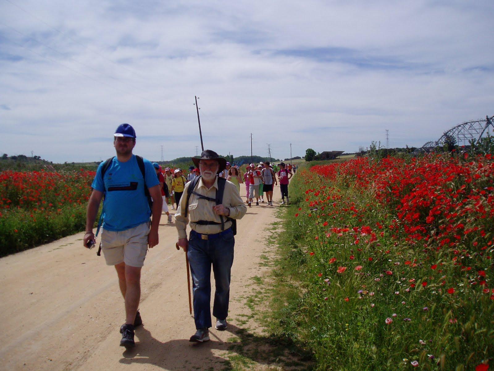El camino del sureste a su paso por Valladolid
