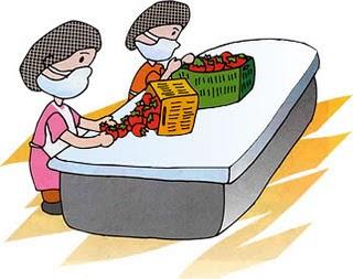 Los care trapo 1 buenas practicas de higiene for Manual de buenas practicas de higiene y manipulacion de alimentos