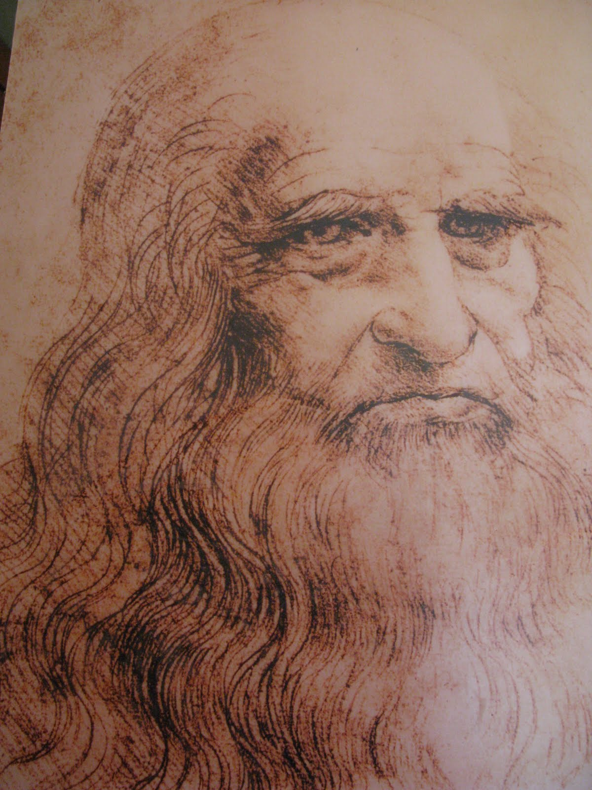 Displaying 17 gt  Images For - Bacchus Painting Leonardo Da Vinci   Bacchus Da Vinci