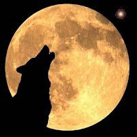 Horoscopo Lunar del 22 al 29/01/08 de susana colucci
