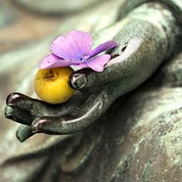 Meditación Vipassana de susana colucci.  Esoterismo