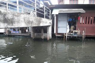 ใต้สะพานบริเวณตลาด ยังมีปลาอยู่ชุกชุม