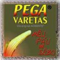 Capa do CD Pega Varetas, Meu Pau de Sebo, lançado em 2003 pela banda de rock independente Acidente