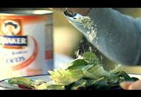 aveia Quaker, a semente do bem - foto do anúncio realizado pela agência StrwberryFrog