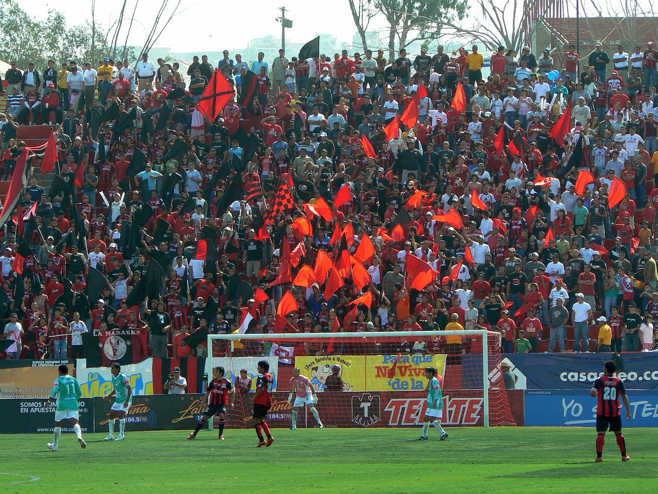 [Festeja+Xoloitzcuintles+un++=?iso-8859-1?Q?a=F1o_en_el_Estadio_Caliente_con_n=FAmeros_positivos-756143.jpg?=+]
