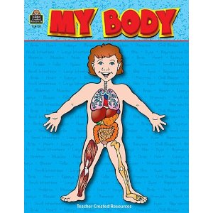 This year in Science we studied the human body  I used this really    Human Body Diagram For Kids