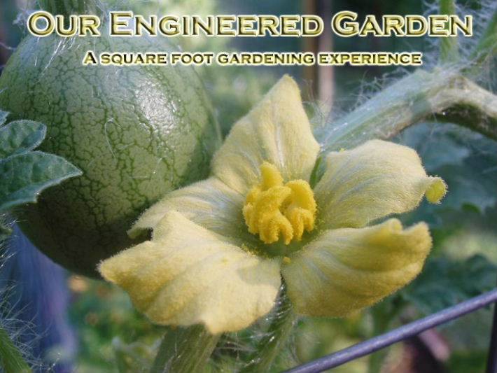 Our Engineered Garden