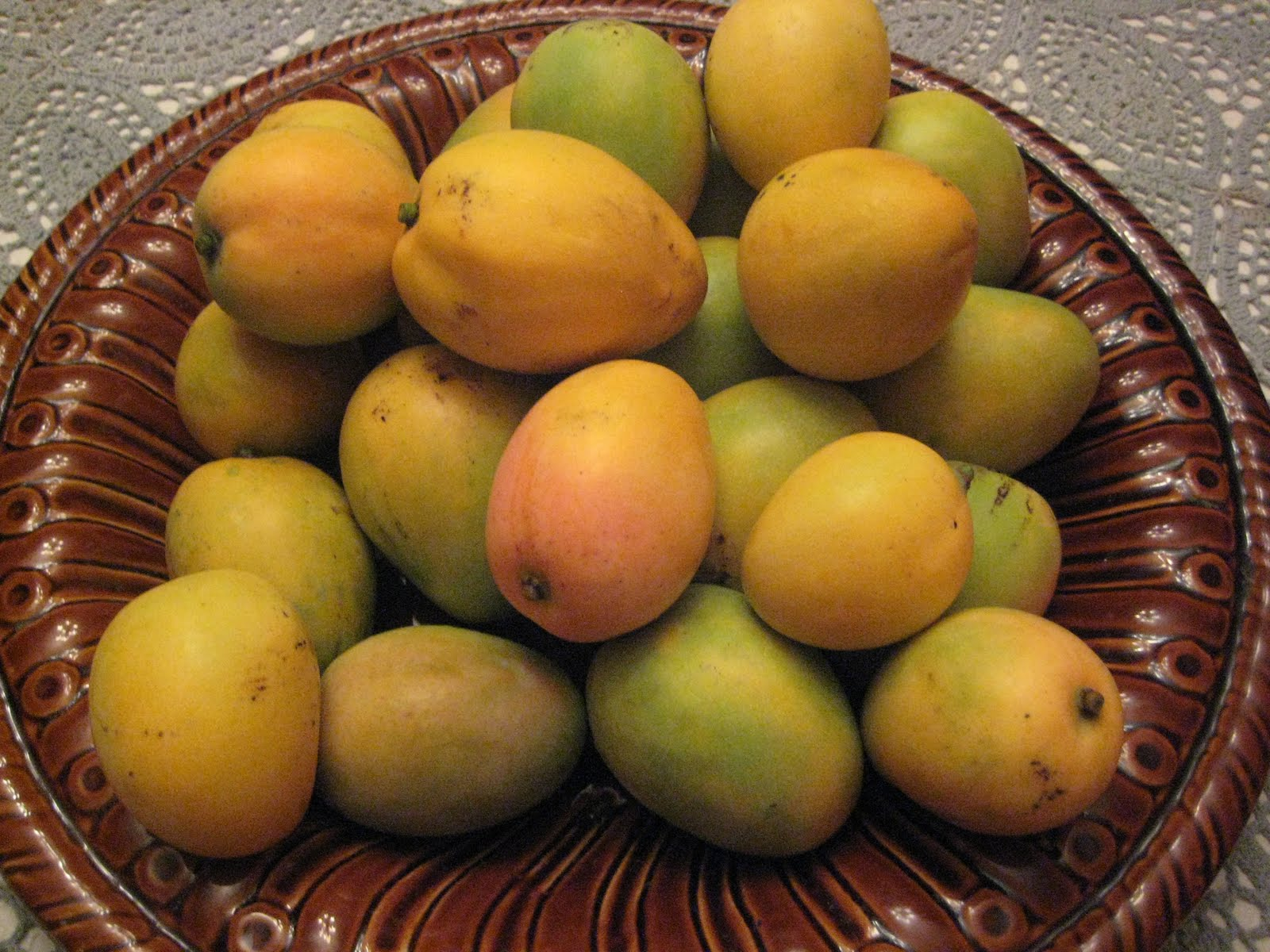 Mangoes were still on the tree was that they re common mangoes just as
