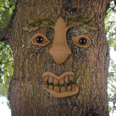 Dreams happy things tree faces - Decorer son jardin pas cher ...