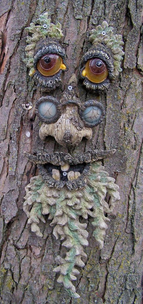 Dreams Happy Things Tree Faces