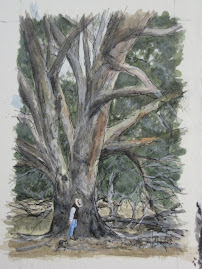 Billy under a huge tree at 'Burrawang'