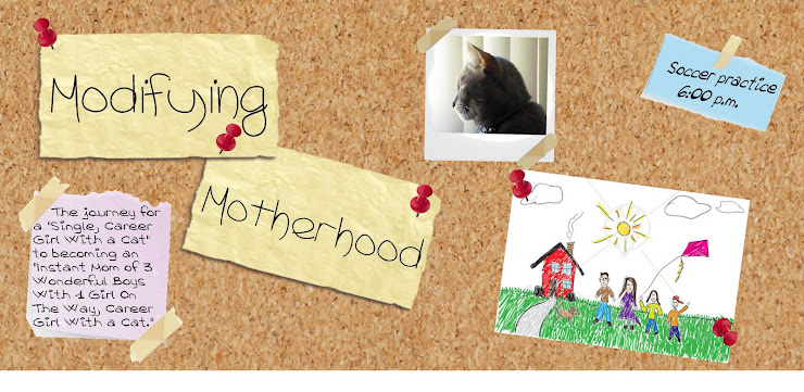 Modifying Motherhood