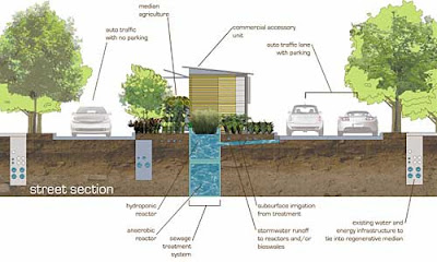 Urban planner's elevation showing lane widths and vegetation