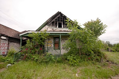 One story house overgrown