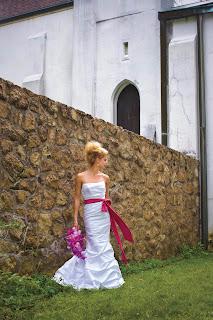 David's Bridal Pink Wedding Dress