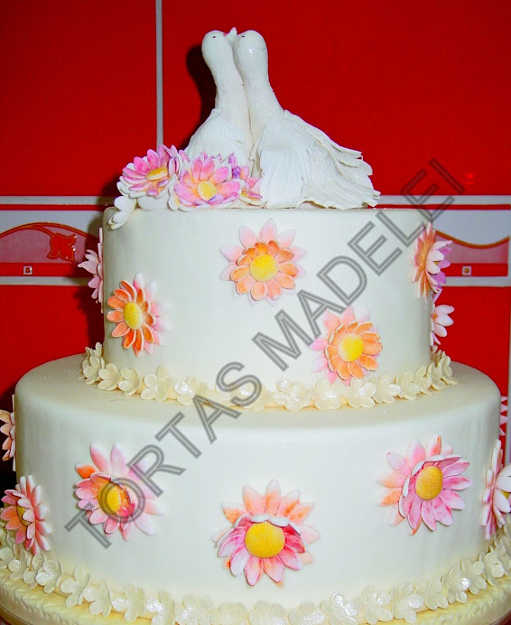 Torta Shower