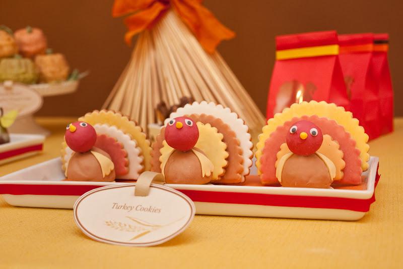 http://4.bp.blogspot.com/_k4x5a3c1b_M/SwrzM9js_JI/AAAAAAAAQjs/onCqihIES90/s800/turkey2.jpg
