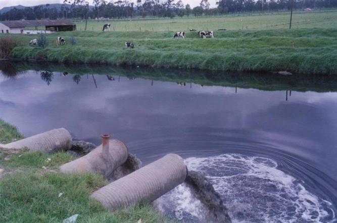 Este es nuestro mundo Agua-CONTAMINACION-REFERENDO-AGUA-MINI