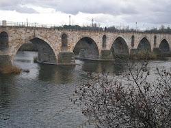 Puente de Piedra (s. XII)