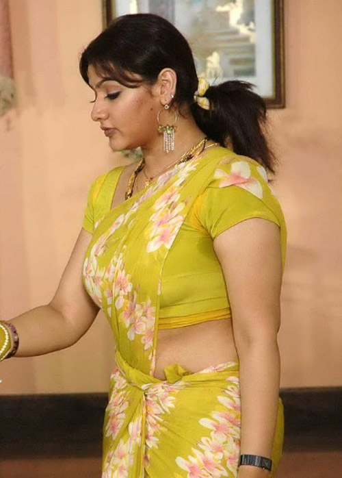 Result of Aunty From Delhi In Saree Photos South Indian Actresses ...