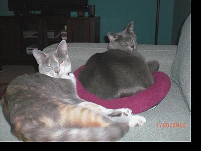 Emma & Mabel