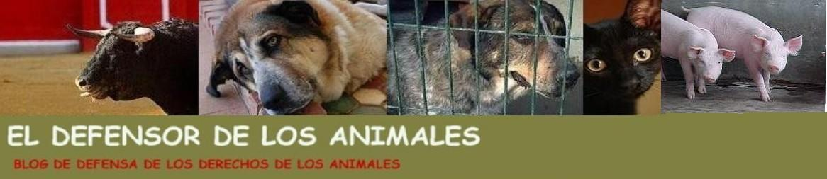 El Defensor de los animales