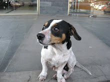 Niña ya fue adoptada en Santiago de Chile!!!!!!!