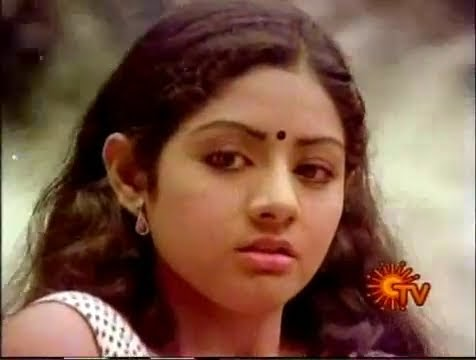 rare amp hot  video songs  sreedevi collection gsv films