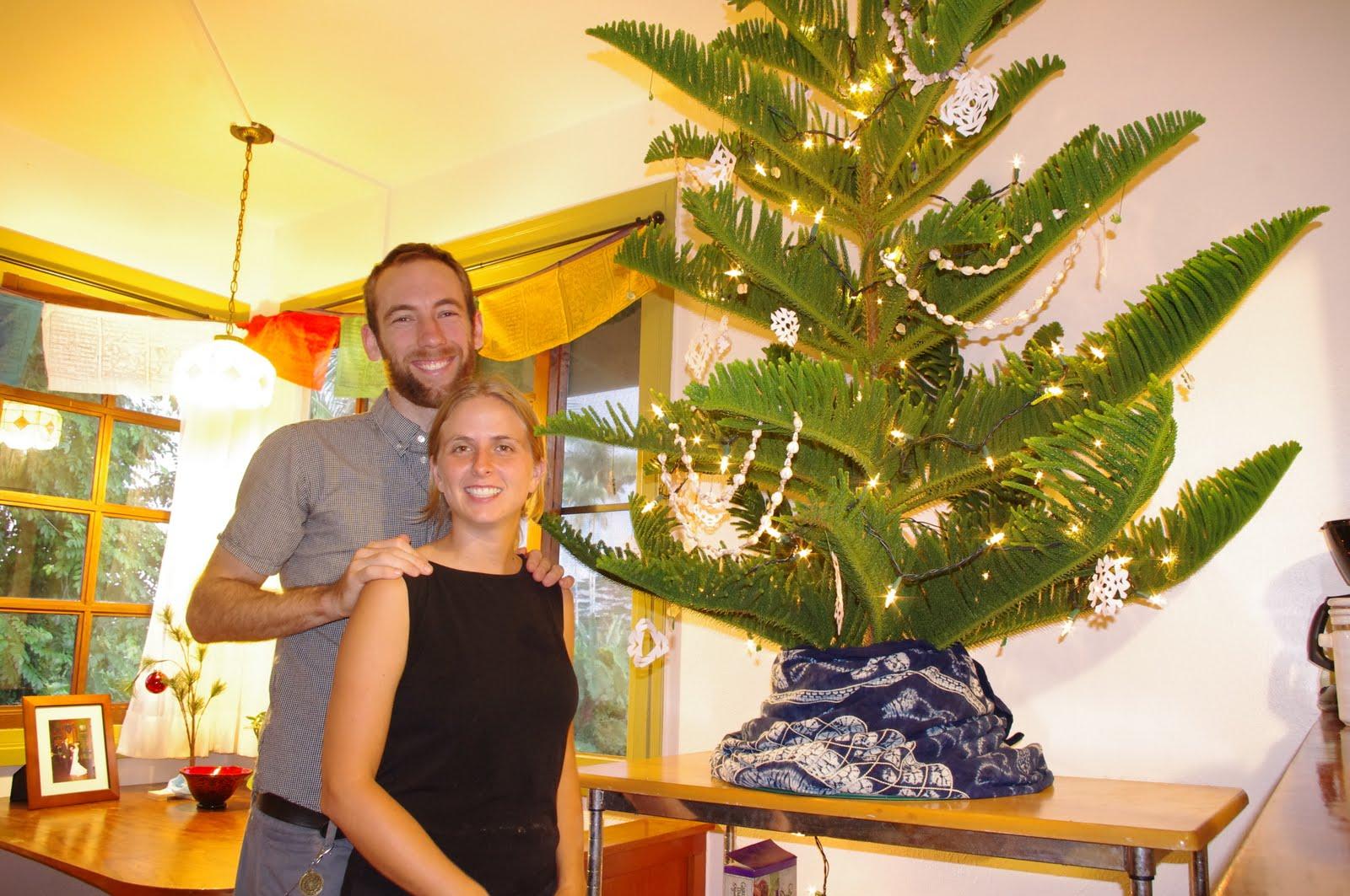 Ordinary Christmas Tree Hawaii Part - 13: Charming Hawaiian Christmas Tree Part - 11: New Apartment And Hawaiian  Christmas Tree