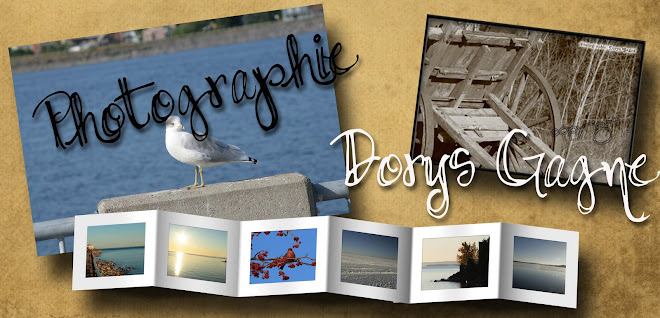 Photographie Dorys Gagne