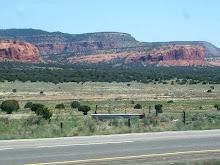 New Mexico's