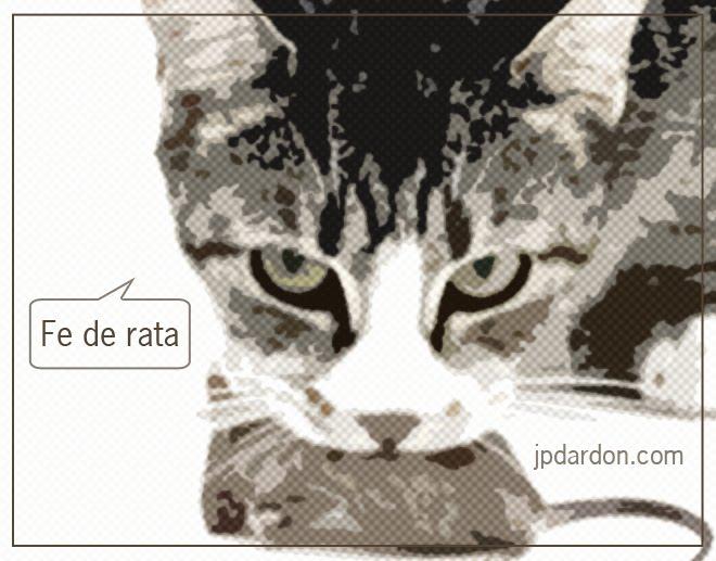 HEADER MARCELA GARAVITO