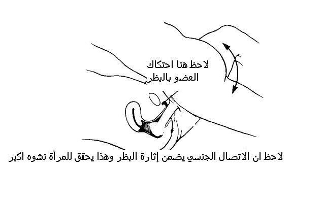 مفاتن جسد المراة http://wawsecrets.blogspot.com/2010/11/blog-post_5995.html