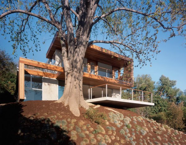 39 all about modern ideas 39 modern eco friendly tree house for Modern tree house plans