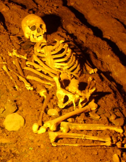 Cheddar Man in Gough's Cave