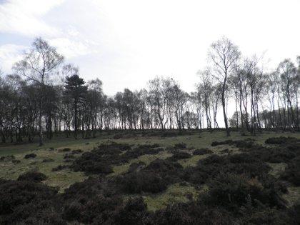 Stanton Moor, Derbyshire