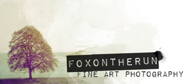 Foxontherun Photography