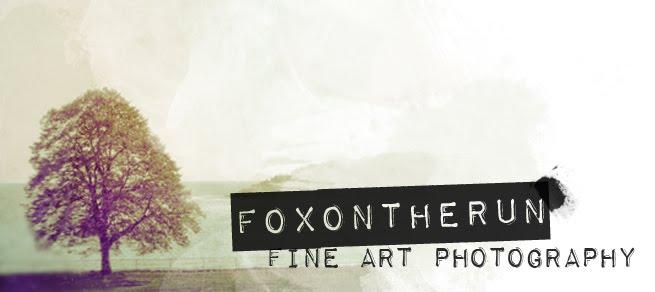 Foxontherun Photography