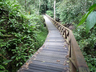 Jalan nak ke Gua Niah...cantik suasana nya..