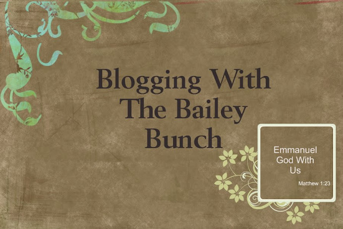 Blogging With The Bailey Bunch