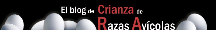 Crianza de Razas Avcolas