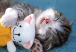 adoro dormir!