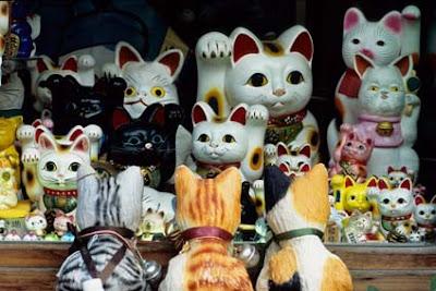 http://4.bp.blogspot.com/_kIxo_yBMKz4/R8QSQJ31ULI/AAAAAAAAAm0/DWqM8oIJ6eg/s400/Japon8.jpg
