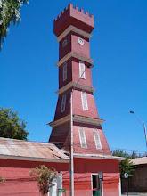 Vicuña - Torre Bauer