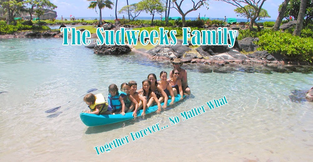 The Sudweeks Family