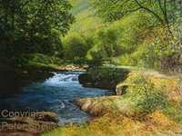 Peter Snell - Landscape