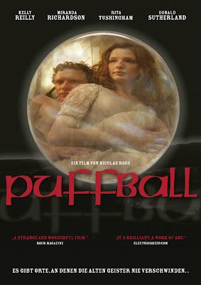 http://4.bp.blogspot.com/_kKR25kNxoR4/SuG7g2mZDoI/AAAAAAAAAY0/krbRYCgWKR8/s400/puffball.jpg