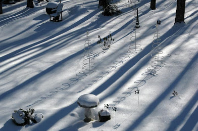 long tree shadows and spiral shadows on snow