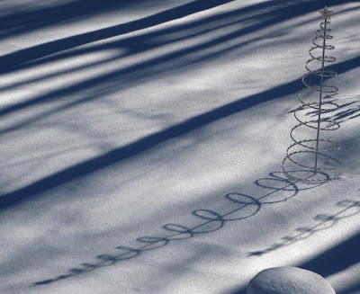 spiral tree shadow on snow